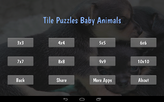 Tile Puzzles · Baby Animals