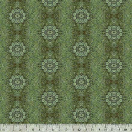 Tall - Kådakanalceller i Barr från Flora L