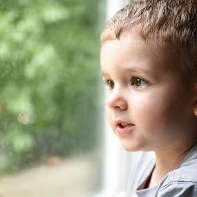 Rainy afternoon 2 by Gabriela Zandomeni - Babies & Children Child Portraits ( boy, rain )