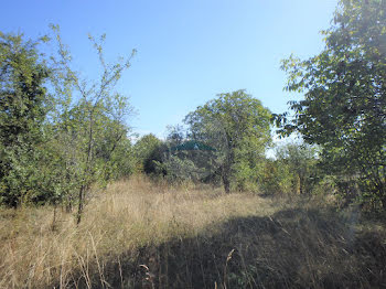 terrain à Plaimpied-Givaudins (18)