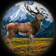 Elk Hunting Calls