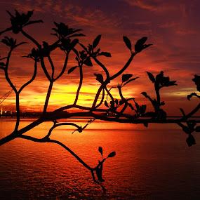 SILHOUETTE by Rudy Kurniawan - Landscapes Sunsets & Sunrises