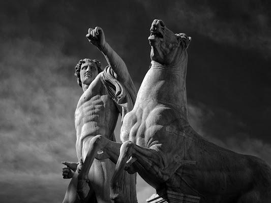 Dioscuri di romano