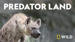 Predator Land thumbnail