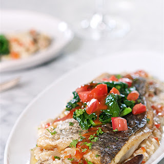 BATTLE BARRAMUNDI Sauteed Barramundi with Vegetable Risotto and Tomato Wine Sauce.