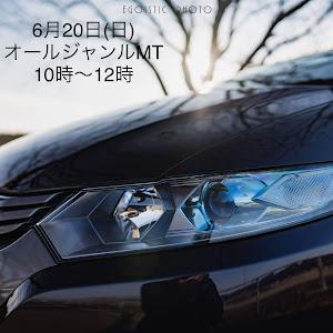 インサイト ZE2のカスタム事例画像 Masaさんの2021年06月18日01:00の投稿