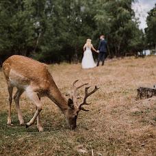 Wedding photographer Haitonic Liana (haitonic). Photo of 22.08.2017