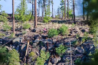 Photo: North side of Los Alamos Canyon; Jemez Mountains Trail Run, May 2014