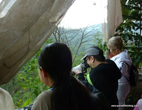 Photo: NOTE: The remainder of the photos are from the Vallarta Bird Festival, held prior to the tour; Birders at the festival, Vallarta Botanical Gardens