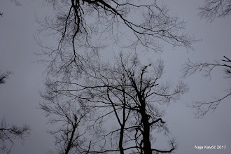 Photo: Na nebu sivina, ...