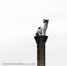 Photo: Anita-2009