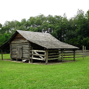 Cracker Homestead by Bill Bettilyon - Buildings & Architecture Other Exteriors ( old homestead, forest capital museum state park, florida )