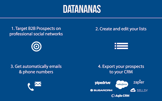 Datananas - B2B Prospects List Builder