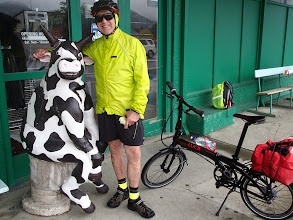 Photo: Russell and cow, Rai Valley