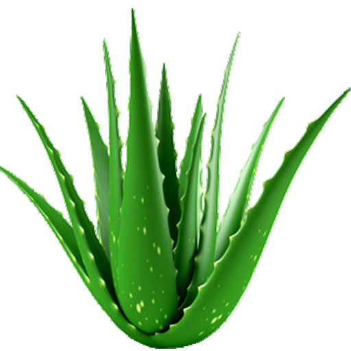 Aloe Vera Benefits - Apps on Google Play