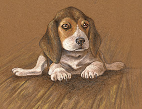 Photo: Beagle Pup