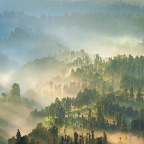 morning mood  by Martin Marthadinata - Landscapes Mountains & Hills ( nature, sunrise, bromo, landscape )