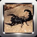 Black Scorpion Wallpapers icon