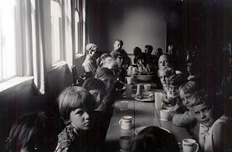 Photo: Bosvolk 1966 te Grolloo