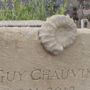 Fossile d'ammonite de la Drome Provençale intégré à la stèle funéraire taillée en pierre calcaire dure de Taulignan