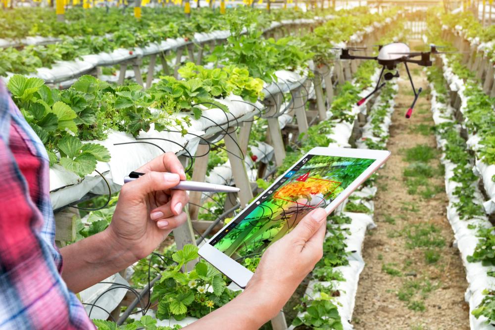 ferramentas tecnológicas em plantação