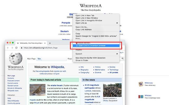 Open in Chromium Browser