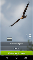 Screenshot of Free Quiz: Nordic Birds
