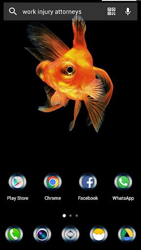 免費下載個人化APP ゴールドフィッシュソロテーマ app開箱文 APP開箱王