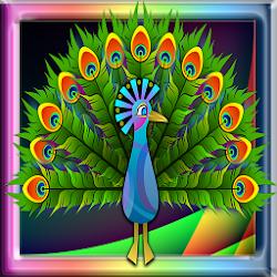 Peacock Run Adventure
