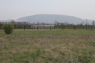 Photo: Pohľad na Hundsheimer Berg