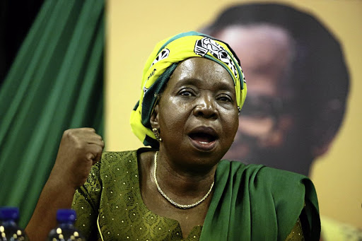 Nkosazana Dlamini-Zuma. Picture: THE TIMES