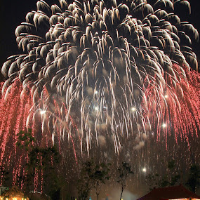 Fireworks at Forbidden City, Legoland Malaysia by ChenLin Kng - City,  Street & Park  Amusement Parks ( miniland, forbidden city, fireworks, night, legoland, tripod )