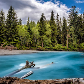 The River Hoh by CEBImagery .com - Landscapes Mountains & Hills ( clouds, stopper, wood, park, national, olympia, lee, sky, hoh, trees, big, rocks, filter, river )