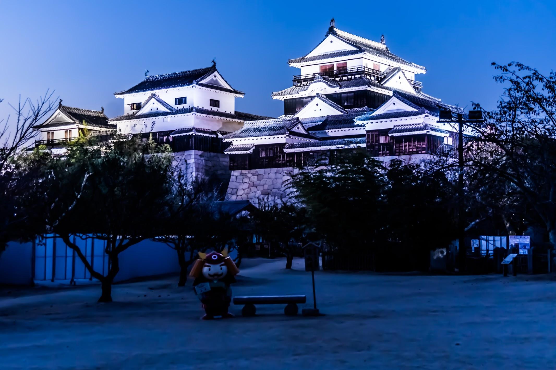 松山城 夜景5