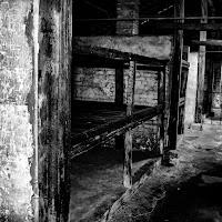 Il male dopo Auschwitz di