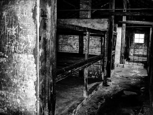 Il male dopo Auschwitz di Cenati Gino