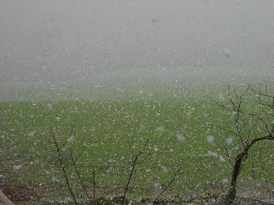 Neve di sant_anarenata