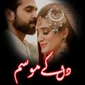 Dil K Mousam: Urdu Novel icon