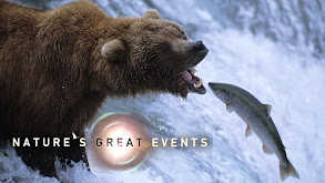 Nature's Great Events thumbnail