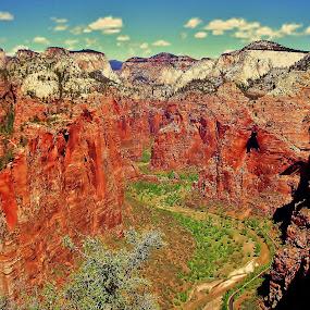 Angel's Landing by Megan Whitehead - Landscapes Mountains & Hills ( mountains, park, utah, national, zions, rock, landscape, hike )