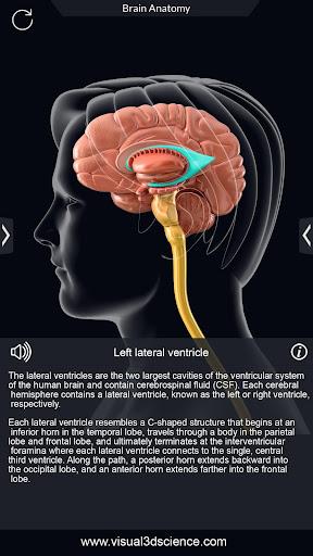 Brain Anatomy Pro. 1.6 screenshots 4