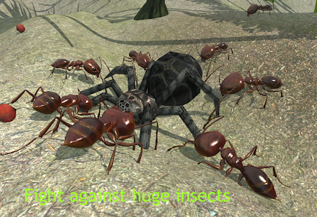 Ant Simulation 3D – Insect Survival Game 1