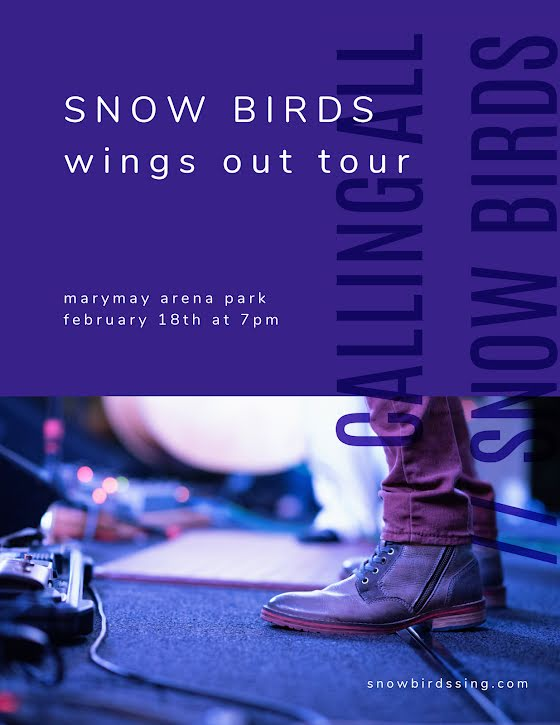 Snow Birds Tour - Flyer Template