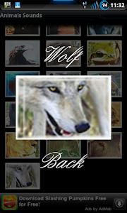 Best Real Animal Sounds Free screenshot 2