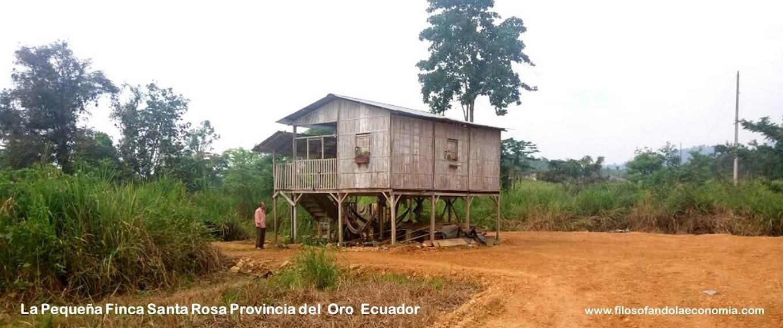 Economia-Zombie-Filosofando-la-Economia-Ecuador