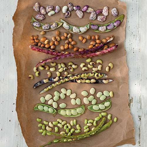 Southern peas and butter beans, popped fresh from the pod and there ...