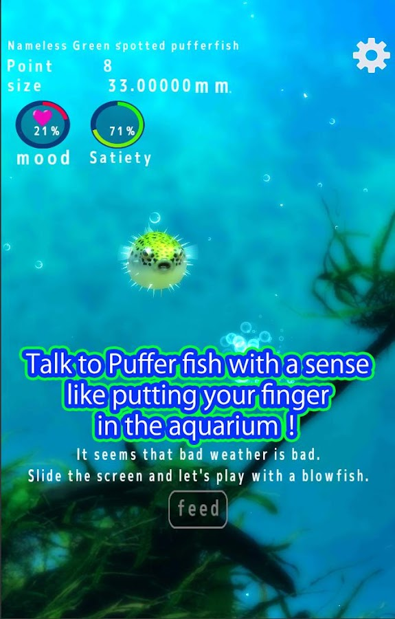 Playing with Puffer fish- screenshot