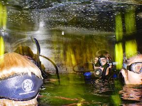 Photo: Inside the habitat