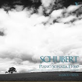 Schubert: Piano Sonata No. 21, D. 960, 6 Moments musicaux, D. 780, Allegretto, D. 915 & Ungarische Melodie, D. 817