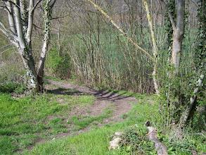 Photo: La vallée du Petit Morin